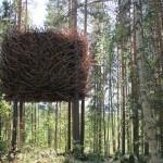 Treehotel_2