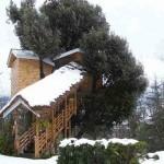 Treehotel_3