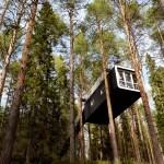 Treehotel_6