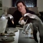 pingvini_mog_tate_02