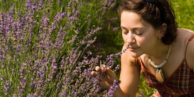 Opustite se uz aromatične biljkeMOŽDA JE MALO POTREBNO DA DOBIJETE BEBU