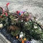 cvetni bicikl