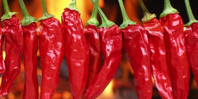 ljute papričice 1