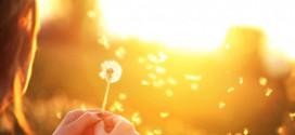 7 načina da budete srećni PRESTANITE SA PRONALAŽENJEM IZGOVORA