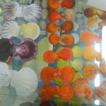 Muzej školjki 10