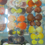 Muzej školjki 13