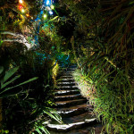 Stepenice koje vode do đakuzija