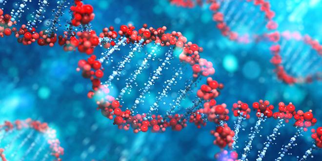 Besplatna predavanja Uvod u Osnovni DNK seminar Teta isceljivanja