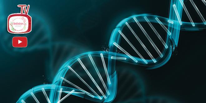 DNK analize Riznica tajni o nama