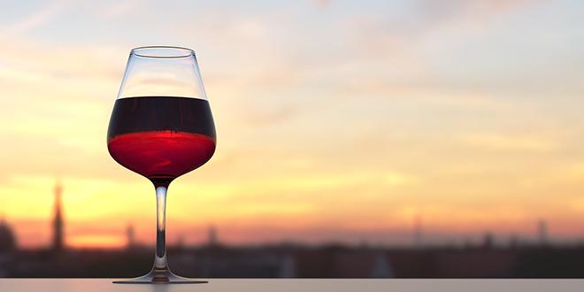 Snežana Sremac Istina o vinu ili – u vinu je istina