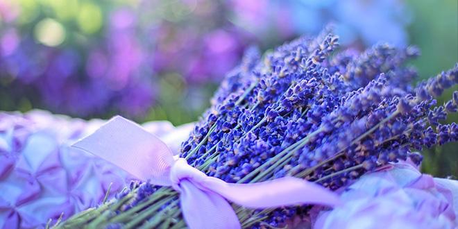 Međunarodni simpozijum Aromaterapija & ajurveda: život u svetu mirisa