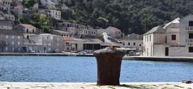 Ostrvo Brač Raj na Jadranu sa dugom tradicijom čuvenog kamena